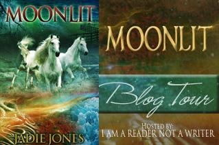 moonlit tour