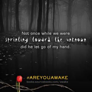 AwakeGraphic1 (2)