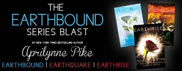 earthbound banner