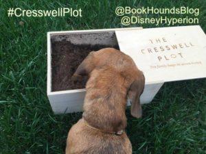 the cresswell plot schatze intsa