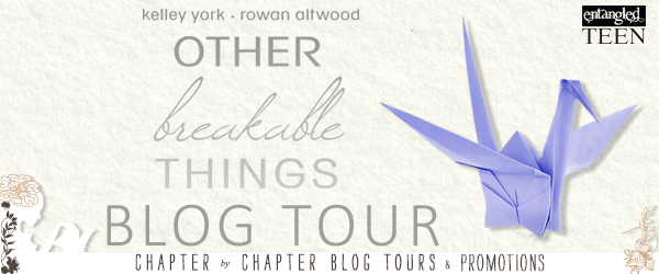 Other Breakable Things Prize Pack